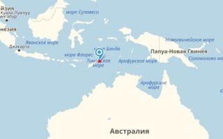 Самый высокий уровень рождаемости в стране Тимор-Лешти