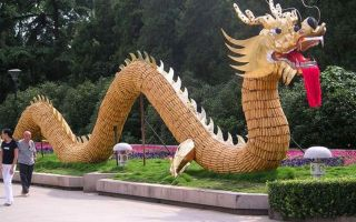 Программа реформ Китая с правящей партией