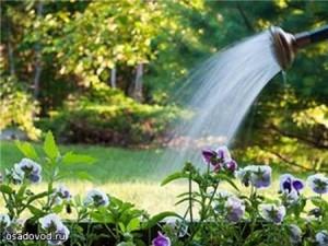 полив если мало воды