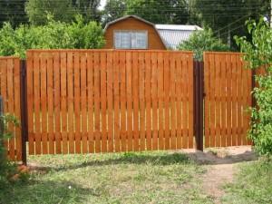 забор живой