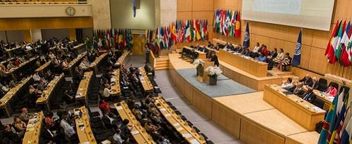 Международные женские организации